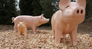Auf dem Playmobil Bauernhof wollen die tierischen Bewohner versorgt werden, darunter diese Schweinchen.