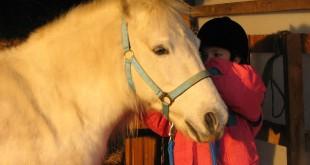 Mehrere Ponyhöfe in der Region Nürnberg-Fürth-Erlangen bieten Ponyreiten für Kinder an.